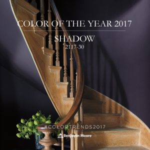 benjamin-moore-colour-of-the-year-2017-shadow